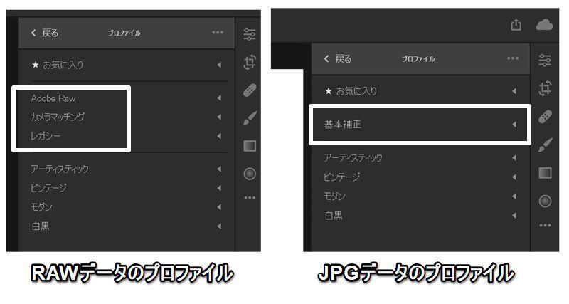 LightroomCCのプロファイルのパネル。RAW・JPEGによって表示が異なる